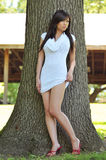 Pose asiatique magnifique de fille Images stock
