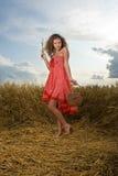 Pose bonito da menina no campo de trigo com cesta Foto de Stock