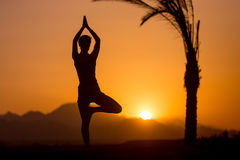 Pose d'arbre de yoga dans l'emplacement tropical Photo stock