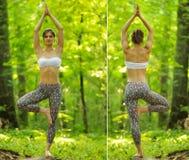 Pose da árvore da ioga pela mulher na grama verde no parque em torno do pinho t Fotos de Stock