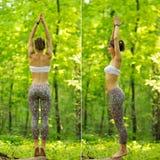 Pose da árvore da ioga pela mulher na grama verde no parque em torno do pinho t Fotografia de Stock