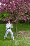 Pose da arte marcial Imagem de Stock Royalty Free
