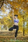 Pose da ioga da árvore fotos de stock royalty free