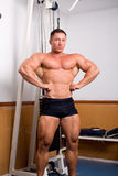 Pose de Bodybuilder images stock