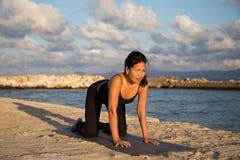 Pose de chat de yoga Images libres de droits