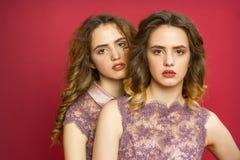 Pose de deux jumelles de soeurs Photo stock