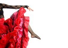 Pose de flamenco Images libres de droits