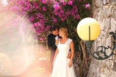 Pose de jeunes mariés extérieure Photo stock