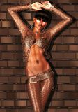 Pose de mode de mur de briques Photo libre de droits