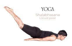 Pose de sauterelle de shalabhasana de yoga Photos libres de droits