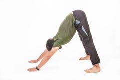 Pose de yoga de chien Photographie stock