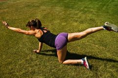 Pose de yoga de chien de gibier à plumes Image stock