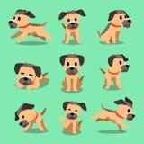 Pose del cane del terrier di confine del personaggio dei cartoni animati Immagine Stock