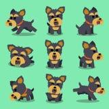 Pose del cane dell'Yorkshire terrier del personaggio dei cartoni animati Immagine Stock