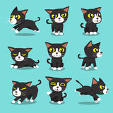 Pose del gatto del personaggio dei cartoni animati Immagine Stock
