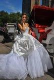 Pose di modello di Kalyn Hemphill davanti al trasporto del cavallo Fotografie Stock Libere da Diritti