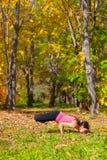 Pose do mayurasana de Padma da ioga imagens de stock royalty free
