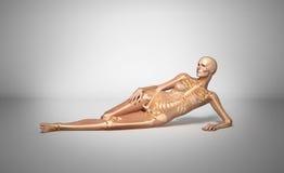 Pose du femme avec le squelette d'os. Images stock