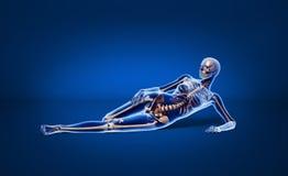Pose du femme avec le squelette d'os. Photographie stock