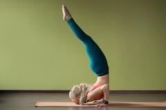 Pose féroce de yoga d'oiseau Photographie stock