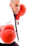 pose mâle de gants de boxe Images stock