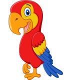 Pose mignonne de bande dessinée d'oiseau d'ara Photos stock