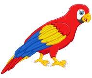 Pose mignonne de bande dessinée d'oiseau d'ara Photo stock