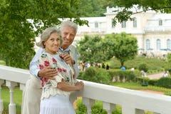 Pose mignonne de couples d'aîné Photo stock
