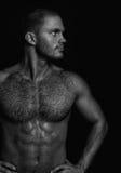 Pose musculaire nue de type Photographie stock libre de droits