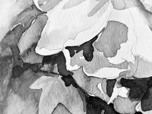 Pose noire et blanche d'aquarelle de peinture de main illustration libre de droits