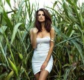 Pose sensuelle de dame de brune extérieure Photographie stock