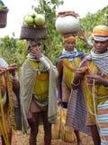 Pose tribale de femmes de Bonda pour des verticales Images stock