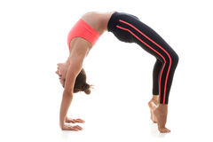 Pose Urdva Dhanurasana Royalty Free Stock Photo