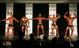 Pose-Vers le bas de bodybuilding Photos libres de droits