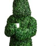 Pose viva do arbusto que guarda o copo de café, isolado em um fundo branco Foto do estúdio Imagem de Stock