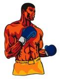 posera för boxare Fotografering för Bildbyråer