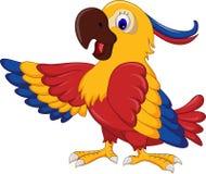 Posera för tecknad film för aravingfågel Arkivfoto