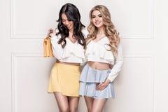 Posera för två förtjusande flickor royaltyfri bild