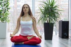 Poserar övande yoga för den unga attraktiva kvinnan som sitter i den Ardha Padmasana övningen, halva Lotus och att utarbeta, den  fotografering för bildbyråer