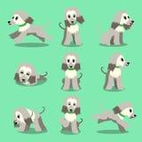 Poses de chien de lévrier afghan de personnage de dessin animé réglées Photographie stock libre de droits