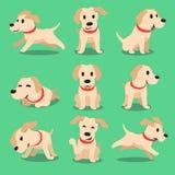 Poses de chien de Labrador de personnage de dessin animé illustration libre de droits