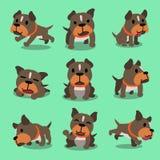 Poses de chien de terrier de pitbull de personnage de dessin animé Images stock
