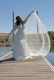 Poses de mariée avec le voile Photos libres de droits