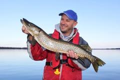 Poses do pescador com os peixes de Pike do norte Imagens de Stock