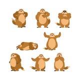 Poses e movimento ajustados de Groundhog Marmota feliz e ioga marmot Fotos de Stock