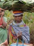 Poses tribales de femme de Bonda pour une verticale Photo libre de droits