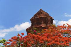 Poshainu towers in Vietnam. Royalty Free Stock Photo