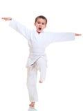 Posição da luta do menino do fu de Kung imagens de stock
