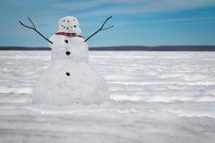 Posição do boneco de neve em uma paisagem da tampa de neve imagem de stock