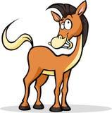 Posição e sorriso engraçados frescos dos desenhos animados do cavalo Imagens de Stock Royalty Free